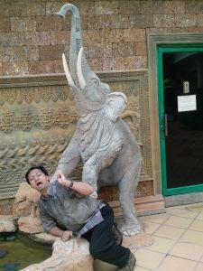 Kamboja, negeri penuh hikayat. Mengidolakan gajah.